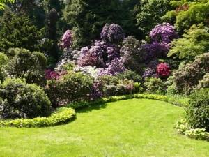 garden-marbella-services-04