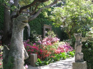 garden-marbella-services-10